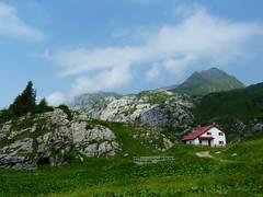 30 giugno 2012 - Cima della Creta di Timau (panorama dreamers) Tags: mountain mountains montagne carnia montagna friuli alpicarniche karnischealpen friaul timau pramosio carnicalps rifugiomorgante