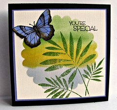 You're Special (turleyfamily(Dawn)) Tags: butterfly handmade hybrid heroarts handmadecard distressink cuttlebug s5154 nestibilities cl479 july2012a quickcard43