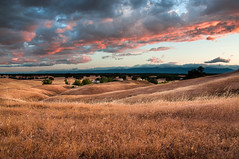California Ranching (Eric Leslie) Tags: ranch ca sunset landscape country oats rollinghills redbluff