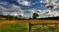 Fields in Newbury (Anatoleya) Tags: sky 3 field clouds canon prime countryside mark f14 iii side country fields 5d 24mm hdr newbury f14l 5d3 anatoleya