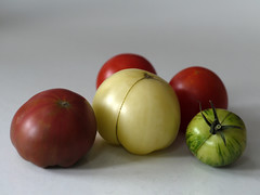 _1150025 (Old Lenses New Camera) Tags: stilllife plants garden tomatoes harvest cine panasonic telephoto g1 f25 wollensak 63mm 212inch