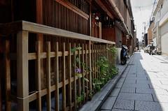 Gion, Kyoto /  (Kaoru Honda) Tags: city summer japan bar landscape japanese restaurant town alley nikon kyoto traditional maiko geiko alleyway tavern     gion   kansai japon  pontocho   kinki        hassaku    d7000