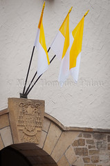 MHP_120731_11692.jpg (marc_homedes) Tags: vatican flag paderborn vaticano bandera procession flagge procesion 2012 drapeau relic reliquien bandiera prozession libori reliquias reliques