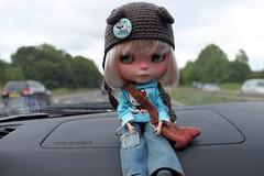 133/365 Nettle, cute passenger!