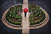 university club driveway garden - st. paul, mn (Dan Anderson.) Tags: flowers rain minnesota umbrella garden day stpaul symmetry sidewalk driveway symmetrical twincities mn redumbrella universityclub universityclubofstpaul