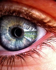 real eyes realize real lies. (livduca) Tags: blue detail macro reflection eye closeup lens eyes close eyelashes blueeyes macrolense