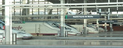 Gare d'Atocha - Atocha Rail Station, Madrid (blafond) Tags: madrid station tren trenes spain gare rail zug bahnhof trains espana ave estacion espagne spanien atocha renfe altavelocidad puertadeatocha