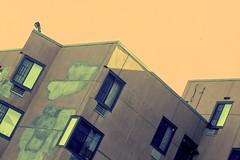 20121021_011 (k_dellaquila) Tags: nyc newyork xpro crossprocessed nikon f3 thebronx fujisuperia400 c41e6