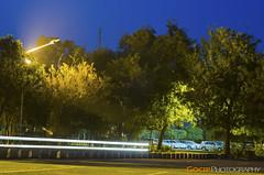 Car Trails (GoCiP) Tags: street longexposure nightphotography trees pakistan sky lightpainting green car stars photography 50mm lights nikon parking streetphotography photojournalism bluesky lamps lahore lums cartrails d7000 nikond7000 gocip zeeshangondal