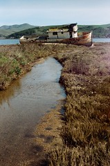 Old Boat, Point Reyes , Northern California (OldLens02) Tags: sf voyage california travel usa west coast us san westcoast sanfransico californie fransico