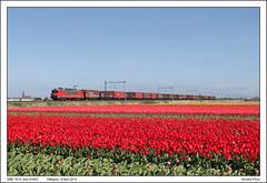 DBS 1615 - Hillegom - 61601 (09-04-2014) (Vincent-Prins) Tags: db 1615 schenker hillegom shimmns 61601