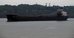 Algowood (Nicober!!!) Tags: canada river ship quebec great lakes cargo stlawrence lacs stlaurent grands fleuve algoma algowood selfloader vraquier