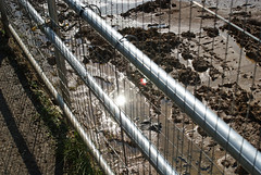 cages 3 (dick_pountain) Tags: london fence wire mud earth soil dirt parliamenthill excavation earthmoving cages pondsproject