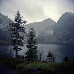 let the silent sway (Super G) Tags: trees mist mountain film rock haze quiet peace escape serenity muted sierranevadamountains holga120n kodakportra400 eldoradonationalforest 20150423garbholgportra400