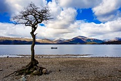 The Tree & A Wee Boat (billmac_sco) Tags: mountains tree water scotland scenic lochlomond