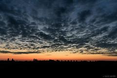 LSP_0394 (LucaSantin) Tags: landscape dawn nikon nuvole alba campagna verona cielo d750 paesaggio veneto bovolone 24120f4