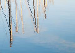 Lake Pepin (FromBluetoGreen) Tags: minnesota sailboats lakecity lakepepin nikond5000