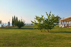 Archeological park Simonov zaliv (salutaryKs) Tags: sea slovenia slo izola