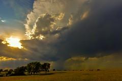Peeking Sun Thunderstorm (thefisch1) Tags: wind cumulo nimbus thunderstorm turbulence kansas sky sunset sun pasture cumulus cloud downpour