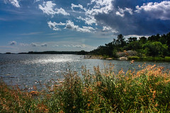 IMG_9007 - Kopie (2)And2more_tonemapped-1 (Andre56154) Tags: sky sun lake reed water clouds see rocks wasser sweden schweden pflanze wolken ufer sonne schilf schren felsen