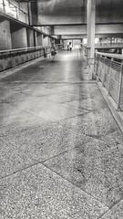 "Hacia la luz (Jackie ""jubercar_78"" Gate) Tags: blancoynegro streetphotography minimalismo monocromtico fotografaurbana planogeneral planonormal planodorsal"