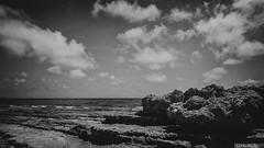 Concurrido (Nando Verd) Tags: las blanco sol pilar de landscape monocromo mar agua san y negro playa paisaje palmeras victoria arena alicante murcia pedro cielo nubes verano aire libre cala rocas mil piedras elda tierra petrer horadada pinatar