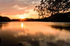 45Yamada Pond Park (anglo10) Tags: sunset japan