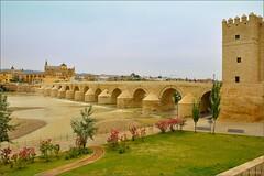 Crdoba : The Puente Romano (Pantchoa) Tags: bridge espaa