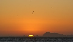 DSC03164 (Pepe Antonio) Tags: sea costa mar jalisco playa costaalegre oceano cihuatlan barradenavidad costasdejalisco
