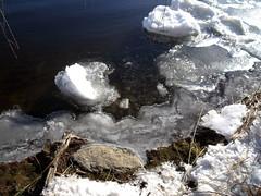 Le printemps insiste  se montrer ! (Alexandre Poulin-Giroux) Tags: canada eau montral qubec arrive lasalle neige printemps saintlaurent glace fleuve bords rive