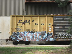 GHOUL (VA. STATE OF MIND) Tags: train graffiti freight ghoul