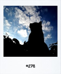 """#DailyPolaroid of 2-7-12 #278 • <a style=""""font-size:0.8em;"""" href=""""http://www.flickr.com/photos/47939785@N05/7489164772/"""" target=""""_blank"""">View on Flickr</a>"""