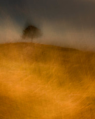 Summer Storm Approaching (dougchinnery.com) Tags: blur kent workshop icm faversham marshes oare intentionalcameramovement