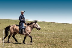 View Mongolia bike challenge 2010 →