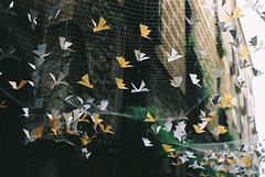 cranes (Stephanie Overton) Tags: white art yellow festival spain pentax girona cranes netting hung