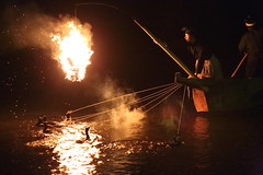 Cormorant fishing   ------ (Teruhide Tomori) Tags: bird japan night river fire kyoto traditional arashiyama    cormorantfishing    ukai