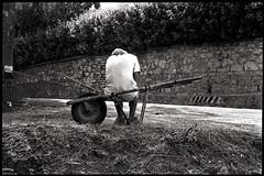 la nobile fatica (francesco melchionda) Tags: street man blackwhite lerici
