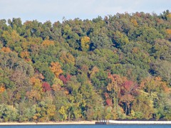 Autumn (Uniquester) Tags: autumn trees red orange lake green kentuckylake