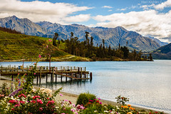 Lake Wakatipu Queenstown (HariKish) Tags: flowers newzealand mountains nature water fauna scenery nz queenstown lakewakatipu walterpeakhighcountryfarm tssearnslawcruise