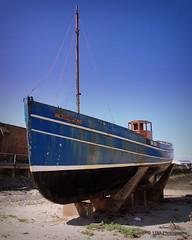 MFV Watchful (Rollingstone1) Tags: scotland boat fishing hull ayr trawler mfvwatchful
