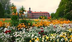Schloss im Bltenmeer (pyrolim) Tags: schloss landesgartenschau tulpen blten lgs eutin