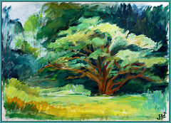 a tree in the evening . . . (Jocawe) Tags: blue brown tree green painting paper availablelight 1855 dpp acryl ocre canoneos450d paintingpleinair
