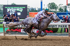 Creator wins the Belmont Stakes (southpaw captures) Tags: belmont jr creator destin ortiz stakes 2016 belmontstakes irad
