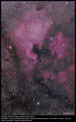 NGC7000・IC5067-0 North America Nebula and Perican Nebula (fuuma_mfuk) Tags: borg swat northamericanebula ngc7000 ic5067 unitech kissx6i swat200 45edⅱ pericannebula ic50670