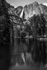 Yosemite Waterfalls in the Spring! Sony A7RII 45EPIC Dr. Elliot McGucken Fine Art Landscape & Nature Photography (45SURF Hero's Odyssey Mythology Landscapes & Godde) Tags: yosemitefalls nature landscape sony yosemite epic bridalveilfalls johnmuir sonycamera anseladams nevadafalls a7r yosemitefineart sonya7rii a7rii drelliotmcguckenfineartlandscapeandnaturephotographysonya7rii yosemitewaterfallsinthespring 45epic