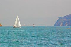DSC_6696 - Copy (digifotovet) Tags: sanfrancisco california bay boat sail