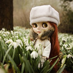 Down among the snowdrops