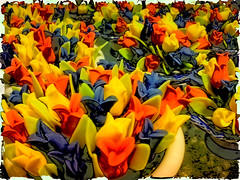 It's tulip time (maistora) Tags: flowers blue red orange holland color colour green tourism netherlands floral amsterdam yellow mobile shop cutout emblem ceramic polaroid design miniature spring colorful phone tulips symbol vibrant postcard sonyericsson fake cellphone smudge vivid kitsch icon tourist plastic souvenir ornament filter clay gift frame tulip nik colourful transfer process effect postprocess edit springtime lightroom 5mp boost primaries efex k850 featurephone
