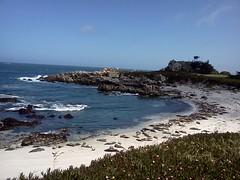 Monerrey California beach