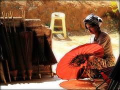 Myanmar - Febbraio 2012 (anton.it) Tags: colore expression digitale myanmar pao turismo viaggio carta lavoro fabbrica villaggio ombrelli etnie donneallavoro canong10 statoshan antonit mygearandme flickrstruereflection1